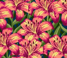 Pink & Yellow Stargazer Lilies - Large