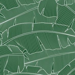 Banana Palm Leaves_Bg Green - 100%