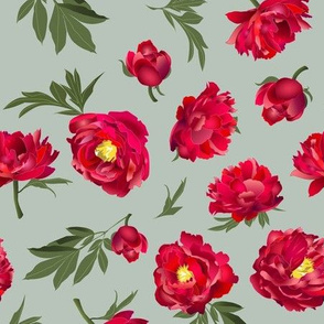 red peonies on sage green
