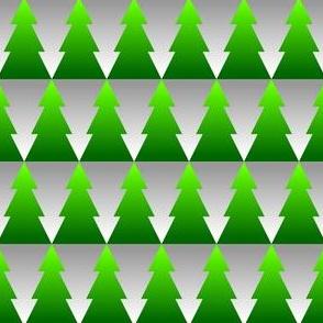 00886212 : gradient xmas firs + snow