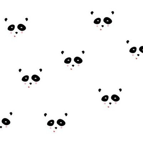 Panda bear faces