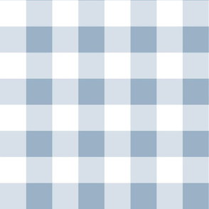 Buffalo Check Plaid in Blue and White