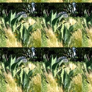 garden_of_contrasts_g (auto correct contrast)-crop top