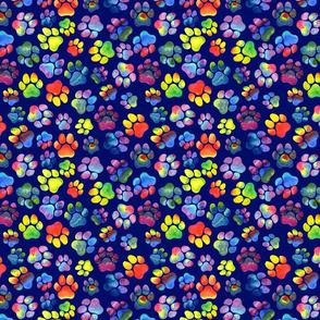 Small Rainbow Pawprints on Blue