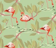 Flamingos and Mangroves