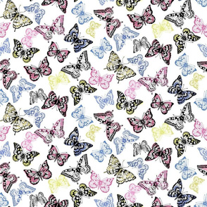 Multi coloured butterflies