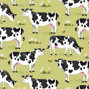 Cows on green