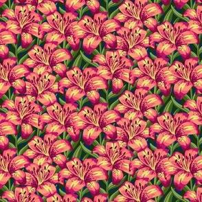 Pink & Yellow Stargazer Lillies - Small