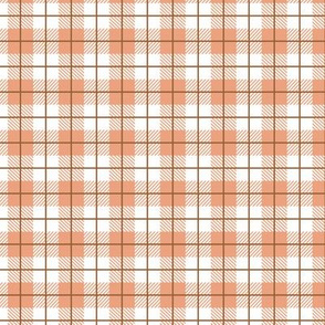 Camp Plaid Peachy Light
