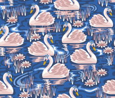 Sweet Swimming Swans