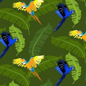 flying parrots and exotic foliage