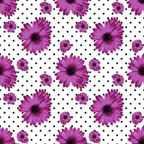 Dots with Purple Daisy Flowers