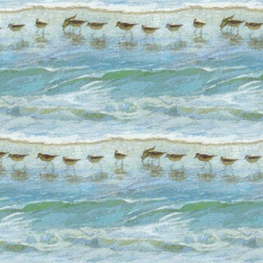 Birds Paint by Numbers