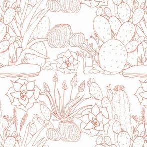 Southwest Succulents - Terracotta