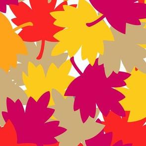 Autumn Fall Red Maple Oak Leaves