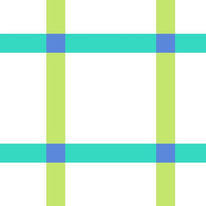 Magnificent Windowpane in Turquoise & Lime