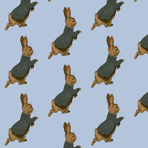 Peter Rabbit Alone