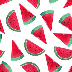 "10""  Watermelon fabric, melon fabric, summer fabric"