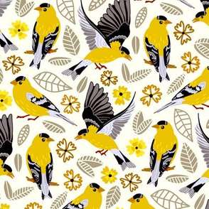 Goldfinches  (Medium size)
