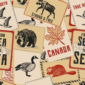 Canadian Wildlife Road trip