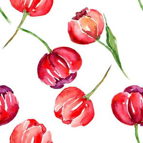 Red Watercolor Tulips
