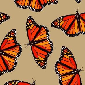 Monarch Butterflies on sandy brown - large