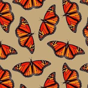 Monarch Butterflies on sandy brown - small