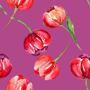 Red Watercolor Tulips on Purple