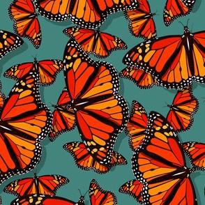 Lots of Monarch Butterflies on teal