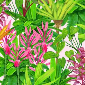 Baligreen_solid pink Spoonflower