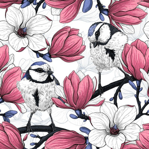 Pink magnolia and blue tit birds