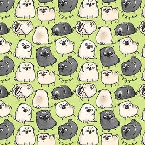Pug Poses - sprig