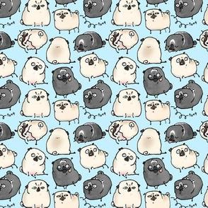 Pug Poses - sky blue