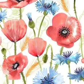 Summer Poppy Meadow
