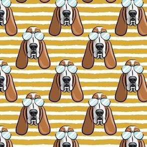 basset hound - sunnies - mustard stripes - dogs wearing sunglasses - LAD19