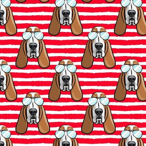 basset hound - sunnies - red stripes - dogs wearing sunglasses - LAD19