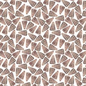 Small Cone Shells White