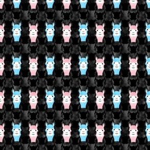 Small Alpaca pride - spotlight pink and blue