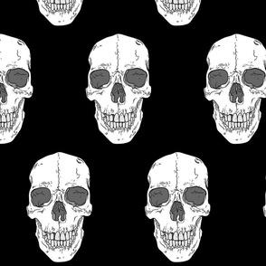 Human Skull // Large // Black