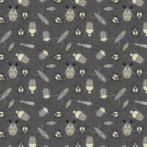 Vintage beetles on grey