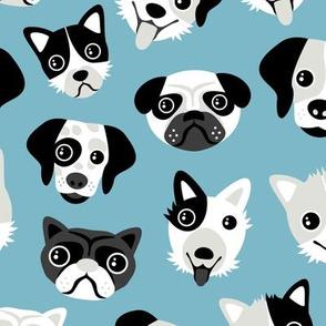 Little puppy friends dog illustration design  blue