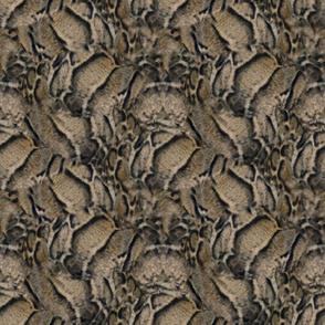 Clouded Leopard Fur Print