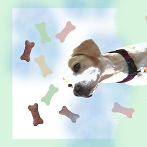 Tea Towel - It's Raining Biscuits and Bones.....Dog Dreams