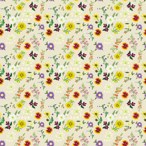 GainesCountyWildFlowersColor_CreamBackground