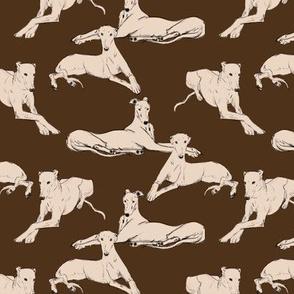 Greyhounds on brown