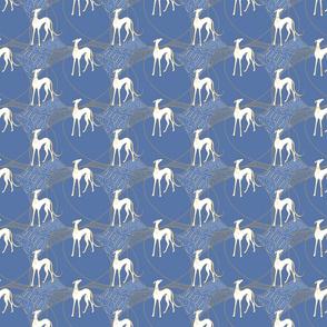 white greyhound in golden circles