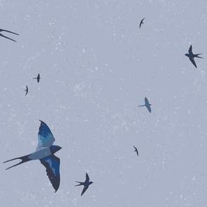 May Swallows VI