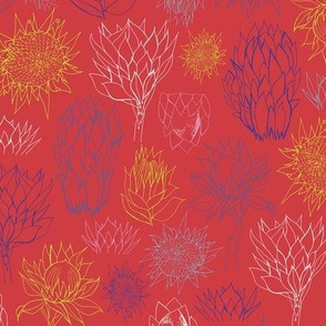 Proteas - Red