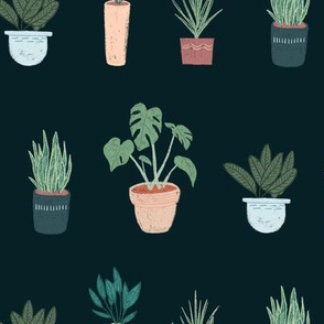 House Plants Dark