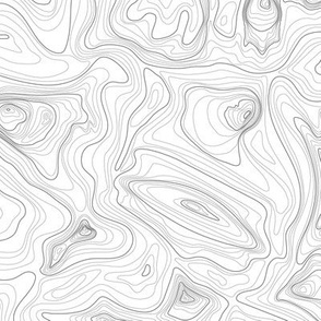 contour map (charcoal)